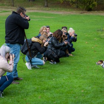 People learning how to use their DSLR