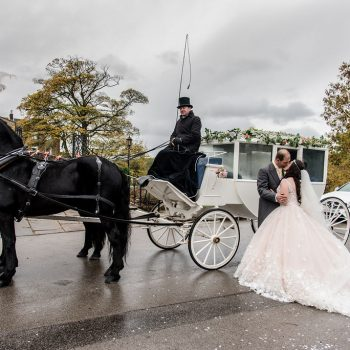 Horse and Carriage at Waterton Park